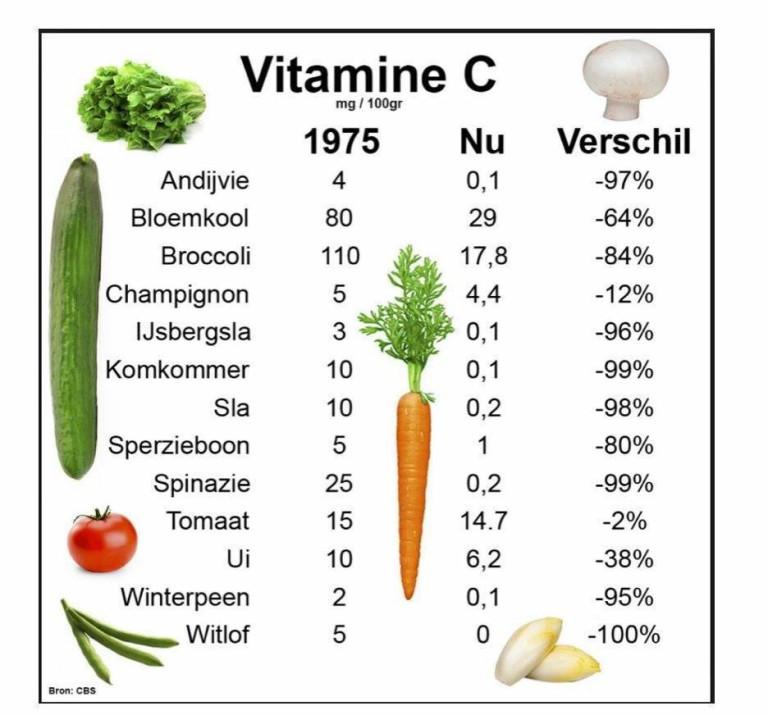 supplementen-vitamines-768x715